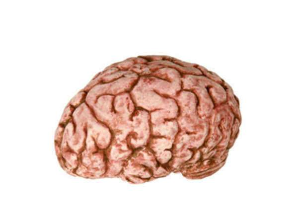 Lesion Cerebral